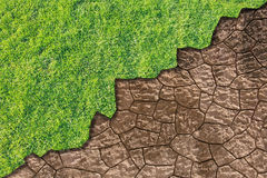 Green grass and dried earth Stock Photos