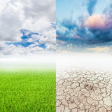 Green grass and drought land Royalty Free Stock Photos