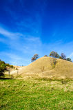 Green grass and dry hill against blue sky Stock Photo