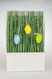Green grass Easter eggs Stock Photo