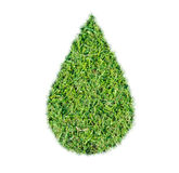 Green grass ecological drop water concept Stock Photography