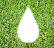Green grass ecological drop water concept Royalty Free Stock Photography