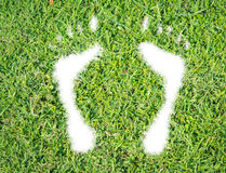 Green grass ecological footprint concept Stock Image