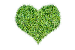 Green grass ecological heart icon. On over white background royalty free stock photography