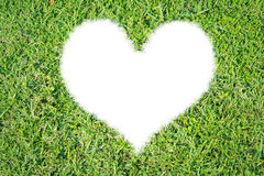 Green grass ecological heart icon. On over white background royalty free stock image