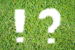 Green grass ecological Question and Exclamation mark icon. On over white background royalty free stock photography