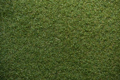 Green grass with empty area for text background. Nature background Royalty Free Stock Photos