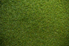 Green grass with empty area for text background. Nature background Stock Images