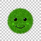 Green grass face smile. Smiley grassy icon, isolated white background. Ecology concept. Happy smiling sign. Symbol eco. Lawn, nature, safe environment, healthy Stock Photography