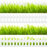 Green grass and fence Royalty Free Stock Photography