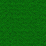 Green grass field. Natural background Royalty Free Stock Images