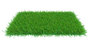 Green grass field. Background. 3d rendering nature royalty free illustration