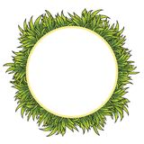 Green grass field background. Grass frame for your text,. Green grass field background. Grass circle frame for your text, vector illustration Stock Images