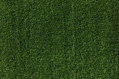 Green grass background. Green grass field background texture Stock Image