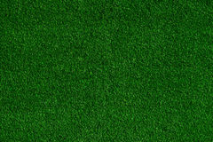 Green grass field background, texture, pattern Royalty Free Stock Image
