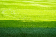 Green grass field background, texture, pattern Royalty Free Stock Images