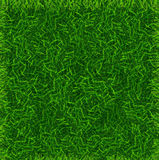 Green Grass Field Banner Football Place Background. Vector Royalty Free Stock Photography