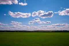 Green grass field below blue sky in Wisconsin stock image