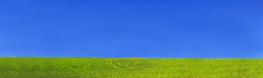 Green grass field and blue clear sky stock images