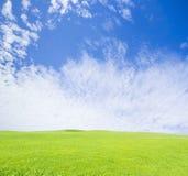 Green grass field on blue sky. Background Stock Photos