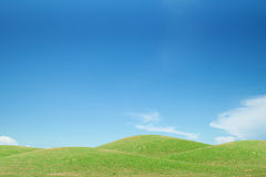 Green grass field and blue sky Stock Photos