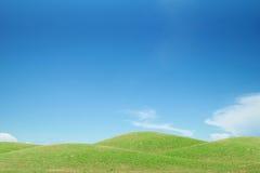 Green grass field and blue sky Stock Photos