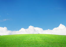 Green grass field and blue sky with clouds on horizon Stock Photo