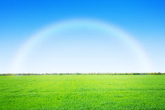 Green grass field and blue sky with rainbow Stock Photos