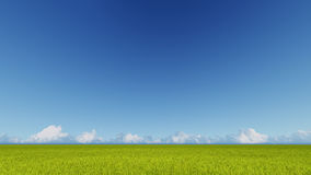 Green grass field and bright blue sky 3D rendering Stock Photos