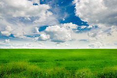 Green grass field and bright blue sky background. Green grass field and bright blue sky Royalty Free Stock Photos