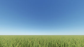 Green grass field and bright blue sky 3D rendering.  Royalty Free Stock Photo