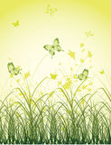 Green grass field with butterflies. Illustration Stock Photo