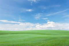 Green grass field with clear blue sky and cloud background. Green grass field with clear blue sky and cloud background Stock Photo