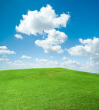 Green grass Field and The Clouds. Green grass and the sky with puffy clouds Royalty Free Stock Image