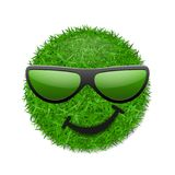 Green grass field 3D. Face wink smile with sunglasses. Smiley grassy emoticon icon isolated white background. Happy. Smiling sign. Symbol ecology, safe nature Stock Photo