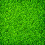 Green grass field. Eps10 vector illustration stock illustration