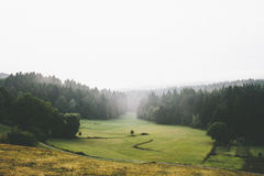 Green Grass Field With Fog Royalty Free Stock Photos