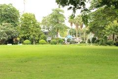 Green grass field in garden Stock Images