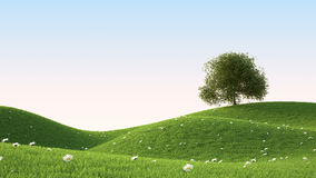 Green grass field. Ideal landscape 3D render Royalty Free Stock Photos