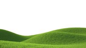 Green grass field. Ideal landscape 3D render vector illustration