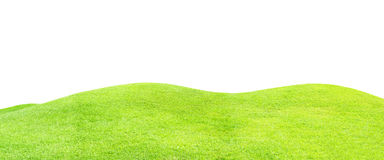 Green grass field isolated on white Royalty Free Stock Photo