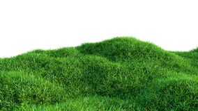 Green grass field isolated on white background. 3d illustration Royalty Free Stock Photography