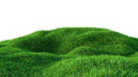 Green grass field isolated on white background Stock Photos