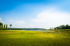 Green grass field with lake in public park Royalty Free Stock Photos