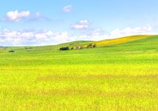 Green grass field landscape under blue sky in spring. With rural house in the background Stock Image