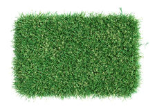 Green grass field. Meadow template for design Stock Photo