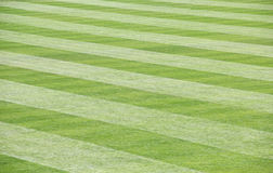 Green Grass Field Mowed with idiagonal stripes Royalty Free Stock Photos