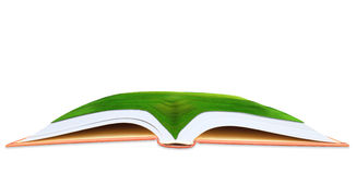 Green grass field on open book use as multipurpose background Stock Image