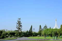 Green grass field in park at city center with blue sky. stock photos