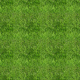 Green grass field pattern Stock Photography